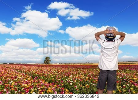 Kibbutz in the south of Israel. Field of flowering garden buttercups. Spring in Israel. Easter week. Concept of active and ecological tourism