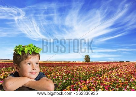 Kibbutz in the south of Israel. Easter week. Spring in Israel. Field of flowering garden buttercups. Concept of active and ecological tourism