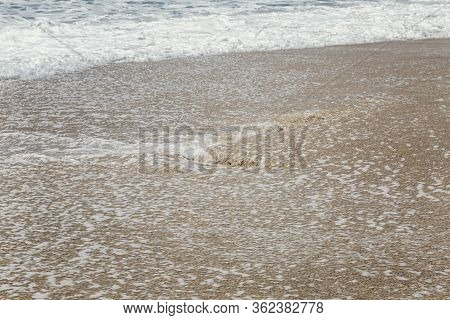 Sandy Beach With A Runaway Sea Wave. Close-up. Space For Text. Background.