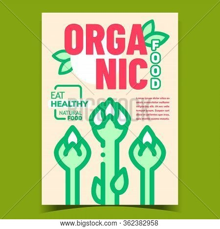 Organic Food Creative Advertising Poster Vector. Asparagus, Sparrow Grass Vegetable, Eat Healthy Nat