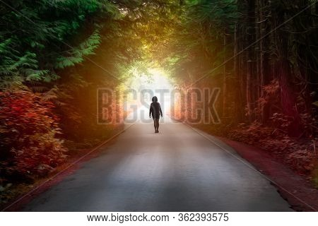 Artistic Render Of A Girl Walking On A Road In The Enchanted Rainforest With Light Shinning. Road Lo
