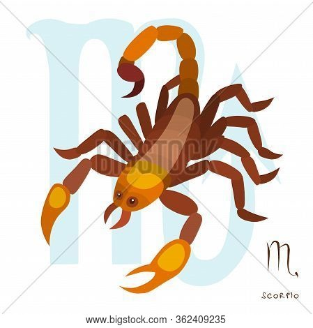 Scorpio Horoscope Sign In Twelve Zodiac, Graphic Of Wireframe Scorpion