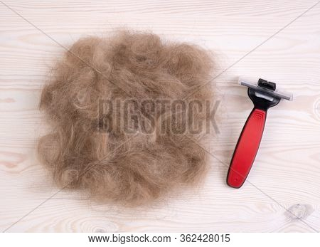 Dog's hair and a pet comb on a wooden background after trimming a  dog
