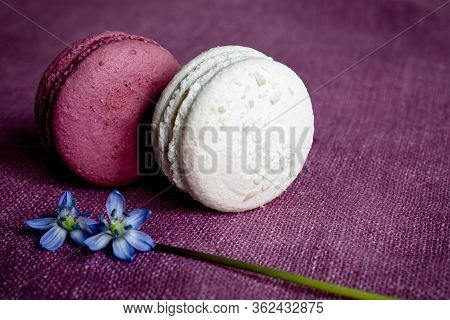 White And Red Macaroons And Spring Flower On A Linen Napkin. Macarons Or Macaroons Is French Or Ital