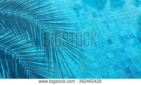 close up outdoor swimming pool with clear clean water
