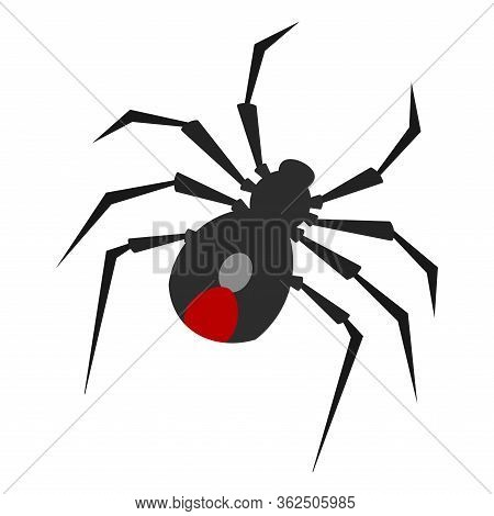 Isolated Spider Image. Arachnid Insect - Vector Illustration