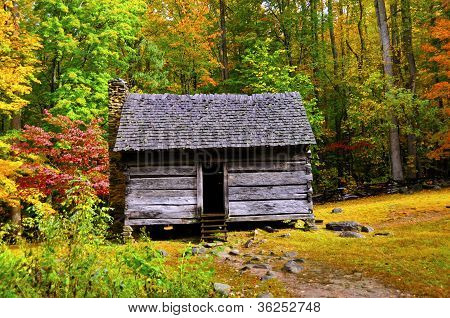 Log Cabin In Fall