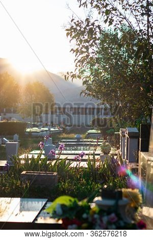 Granite Shiny Gravestones With Multiple Beautiful Flowers. Low Early Morning Sunrise Bright On The S