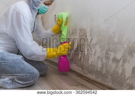 Close Up Of A Worker Of Cleaning Service Removes The Mold Using Antimicrobial Spray And Scrubbing Br