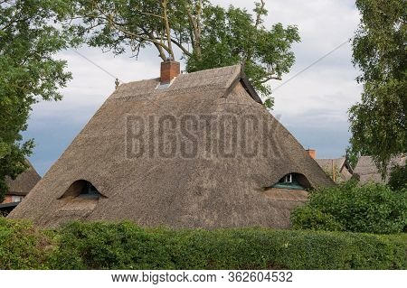 Houses On The Fischland-darß With A Thatched Roof