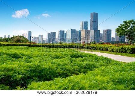 Park Plants And Modern Architecture, Fuzhou Cityscape, China.