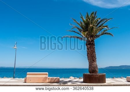 Bench And Palm On Seafront In Porto Santo Stefano Village In A Sunny Day With Beautiful Blue Sky. Tu
