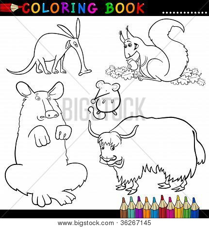Coloring Book or Page Cartoon Illustration of Funny Wild Animals for Children poster
