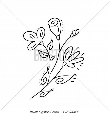 Vector Bouquet Floral Hand Drawn Elements In Elegant And Minimal Style. Isolated Objects Flowers And