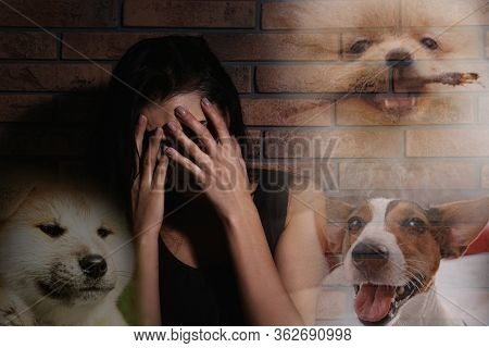 Scared Young Woman Suffering From Cynophobia Near Brick Wall. Irrational Fear Of Dogs
