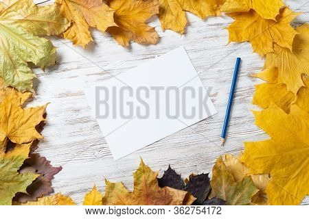 White Paper Sheet And Pencil Lies On Vintage Wooden Desk With Bright Foliage. Flat Lay Composition W