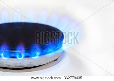 Gas Burns In The White Gas Stove Burner. Blue Fire Burning Natural Gas.