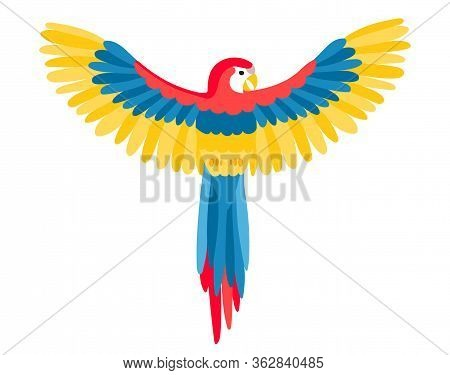 The Big Beautiful Aru Parrot With Spread Wings In Flat Style. A Bird Flies Spreading Its Wings Or Si