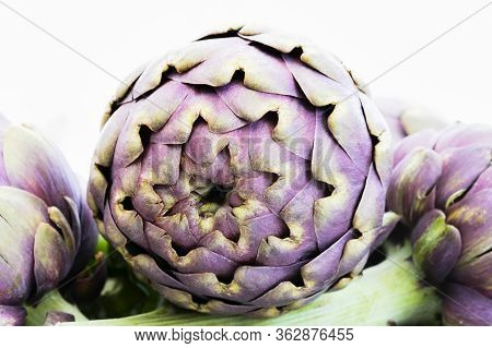 View Of Artichoke In Front Of Other Artichokes In Kitchen