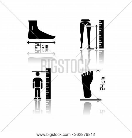 Body Measurements Drop Shadow Black Glyph Icons Set. Inside Leg, Foot Length And Human Height Determ