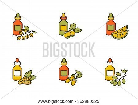 Hair Oils Rgb Color Icons Set. Natural Jojoba Beauty Product. Kalahari Melon Seed Essence In Glass J