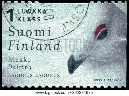 Vintage Stamp Printed In Finland 2000 Show Bird