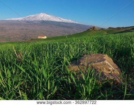 landscape green wheat with yellow rural house and Etna Mount wide view in Sicily