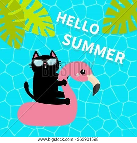 Black Cat Floating On White Flamingo Pool Float Water Circle. Swimming Pool Water. Hello Summer. Top