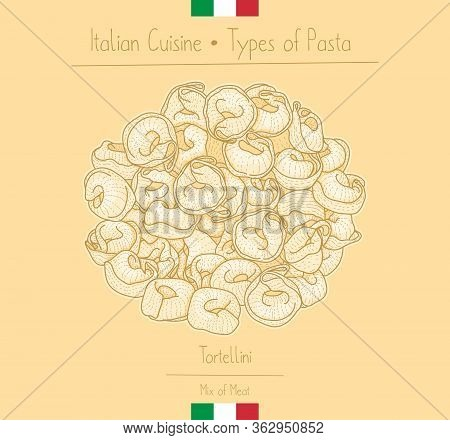 Italian Food Ring-shape Pasta With Meat Filling Aka Tortellini, Sketching Illustration In The Vintag