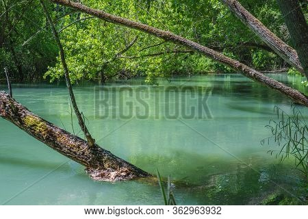 Horizontal Color Image With A Side View Of A Bank Of Guadalquivir River With Trees And Branches On T