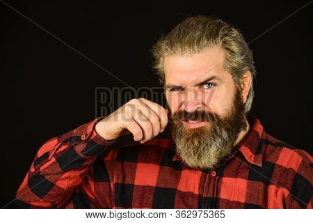 Perfect Moustache. Male Barber Care. Bearded Man. Hair And Beard Care. Confident Handsome Brutal Man