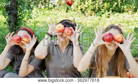 Family With Apple In Apple Orchard. Beautiful Sisters And Mopther With Organic Apple In Orchard. Har