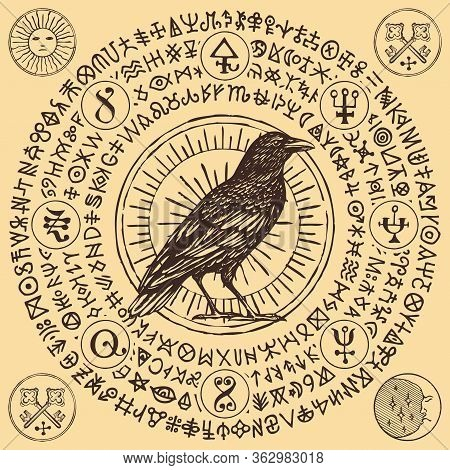 Vector Illustration With A Sorcery Crow Or Wise Black Raven In Vintage Style. A Pencil-drawn Banner