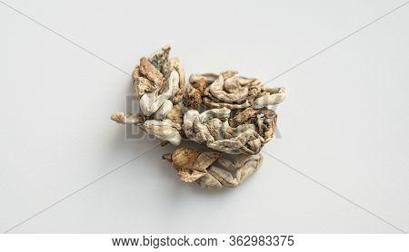 Medical Research Of Psilocybin Mushrooms