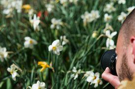 Photographer Photographs Flowers For Photo Stocks