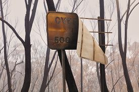 A Street Sign Burnt By Bushfire In The Blue Mountains In Australia