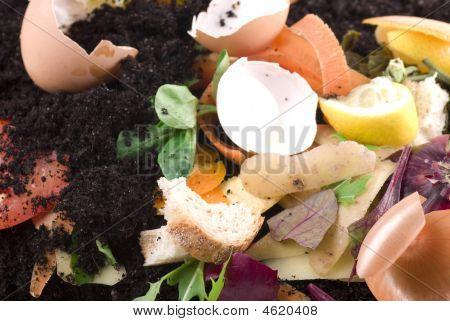 Kompostering