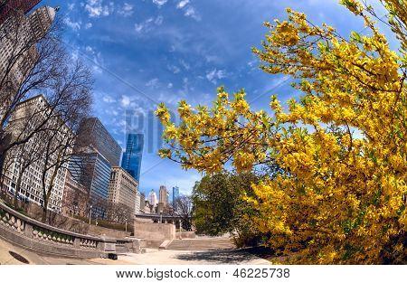 Michigan Avenue In The Spring