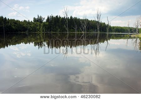 Forest Lake In Mid-russia