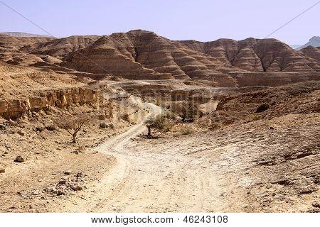Dusty Road In The Negev Desert