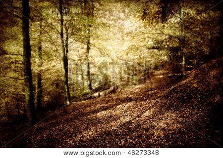 mystischen Wald