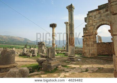 die Ruinen von Volubilis capitol