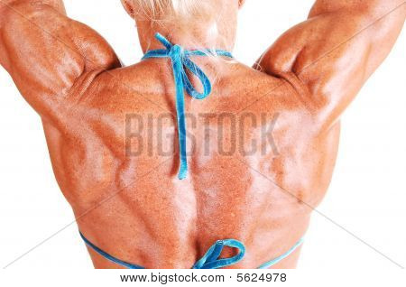 Tha Back Of A Muscular Woman.