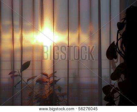 Sun through courtains