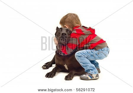 Friendly embraces a little boy and dog poster
