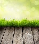 Grass and planks abstract presentation background concept with empty space poster