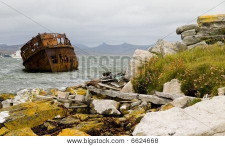 Falkland Inseln Schiffbruch und Küste