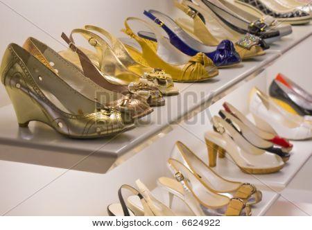 Trendy Woman's Shoes