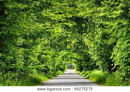 Green Road Tunnel.
