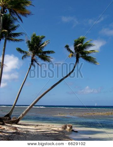 A perfect day in the South Pacific